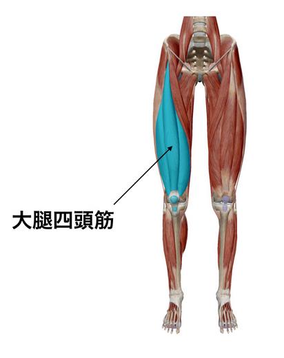 姿勢改善、太腿太い改善トレーニング